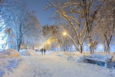 Kalamazoo Snow Removal