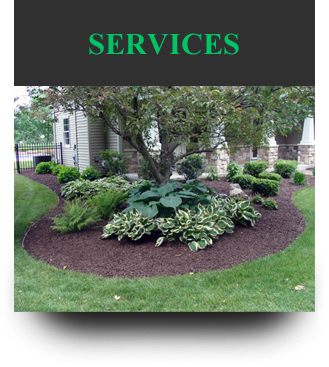 Landscaping & Lawn Mantenance Services